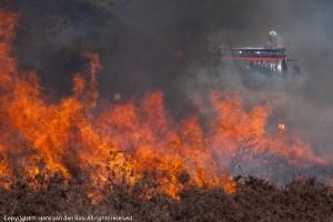Gecontroleerd branden van hei op Schietterrein Oldenbroekse Heide