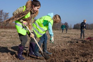 160 kinderen van basisscholen uit Elst planten hagen voor voedse