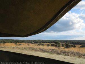 Wildobservatiepunt de Elsberg, NP Veluwezoom